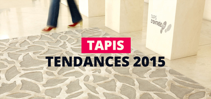 Tapis les tendances 2015 tapis d 39 entr e - Les differents types de tapis ...