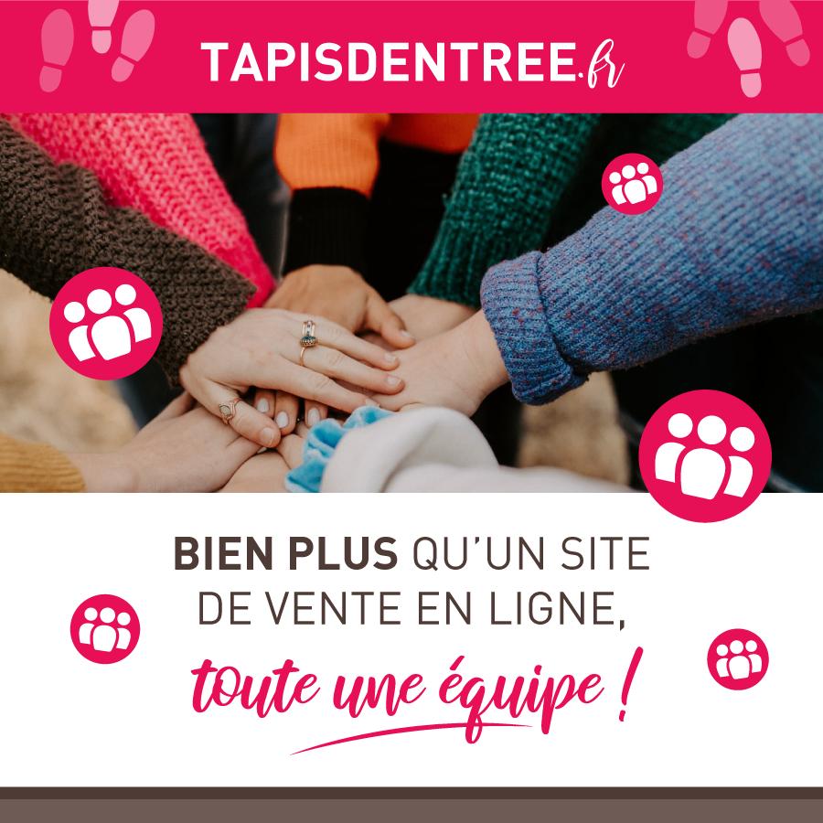team tapisdentree.fr